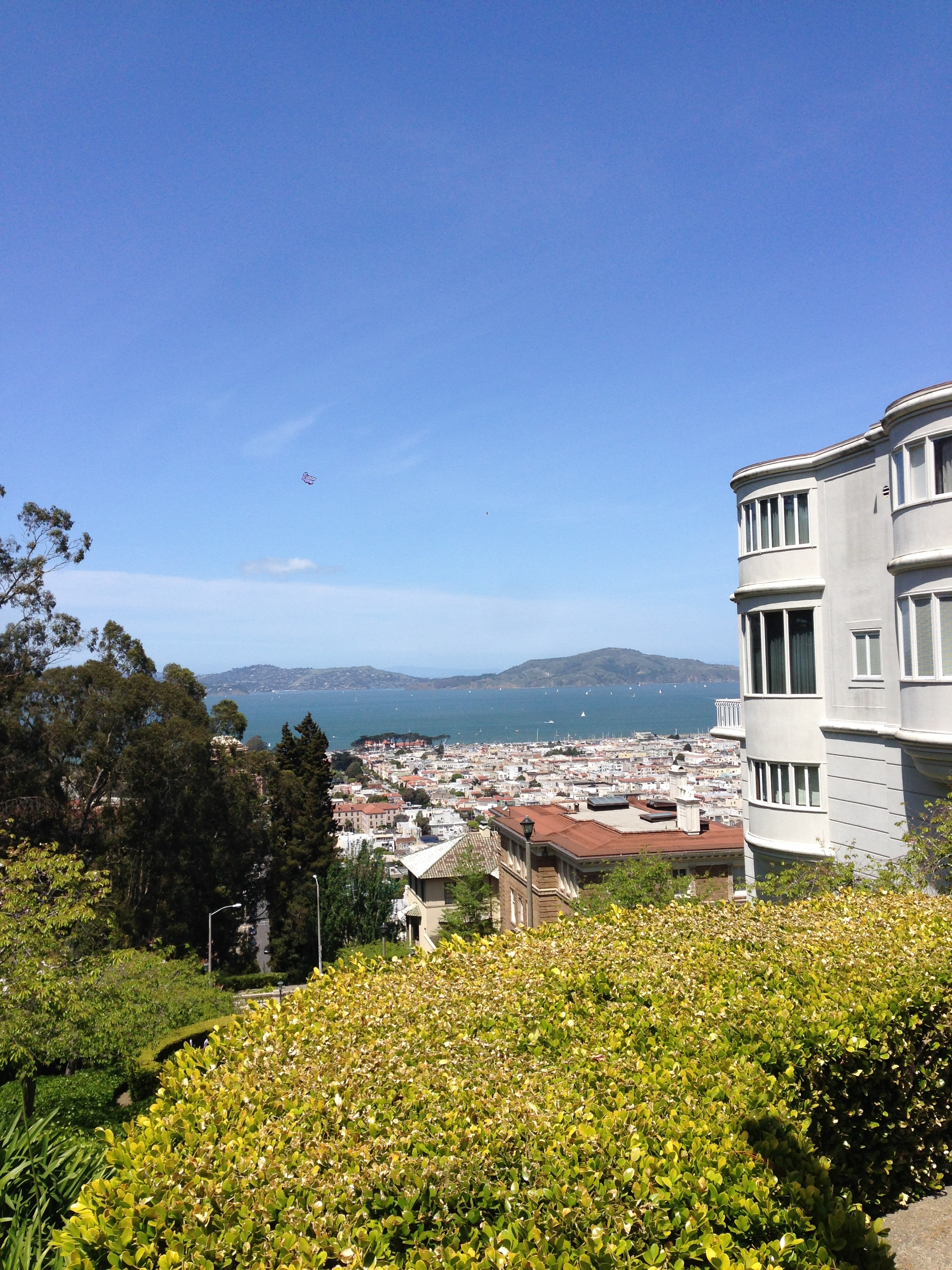 You know, just the view of the bay from our neighborhood.