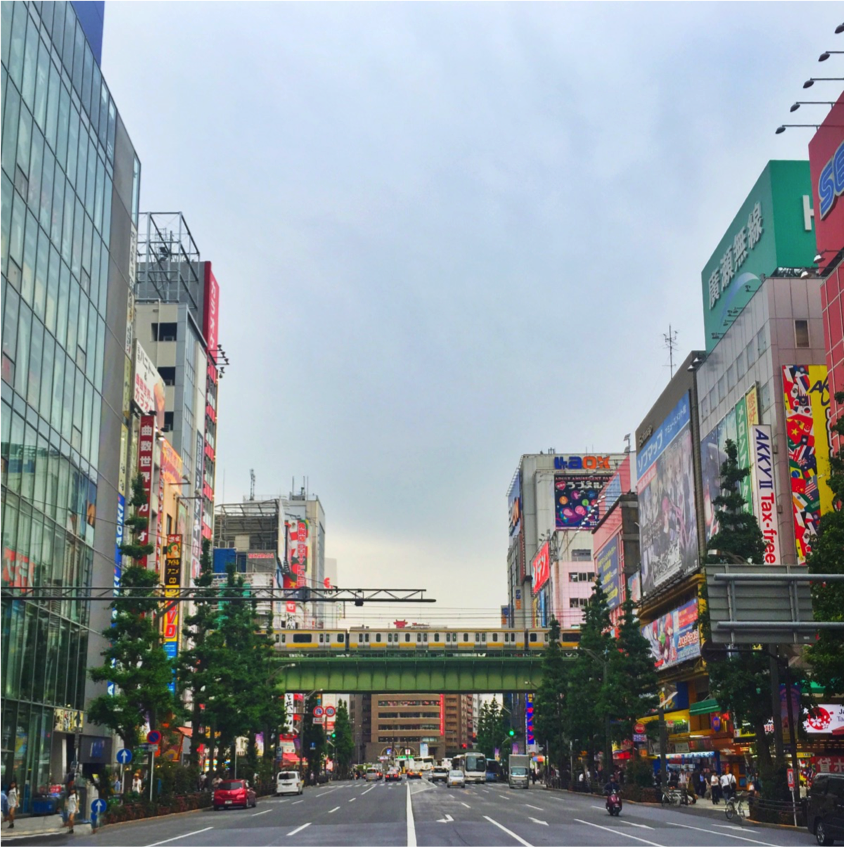 Photo I took of the Akihabara district in Tokyo this past summer