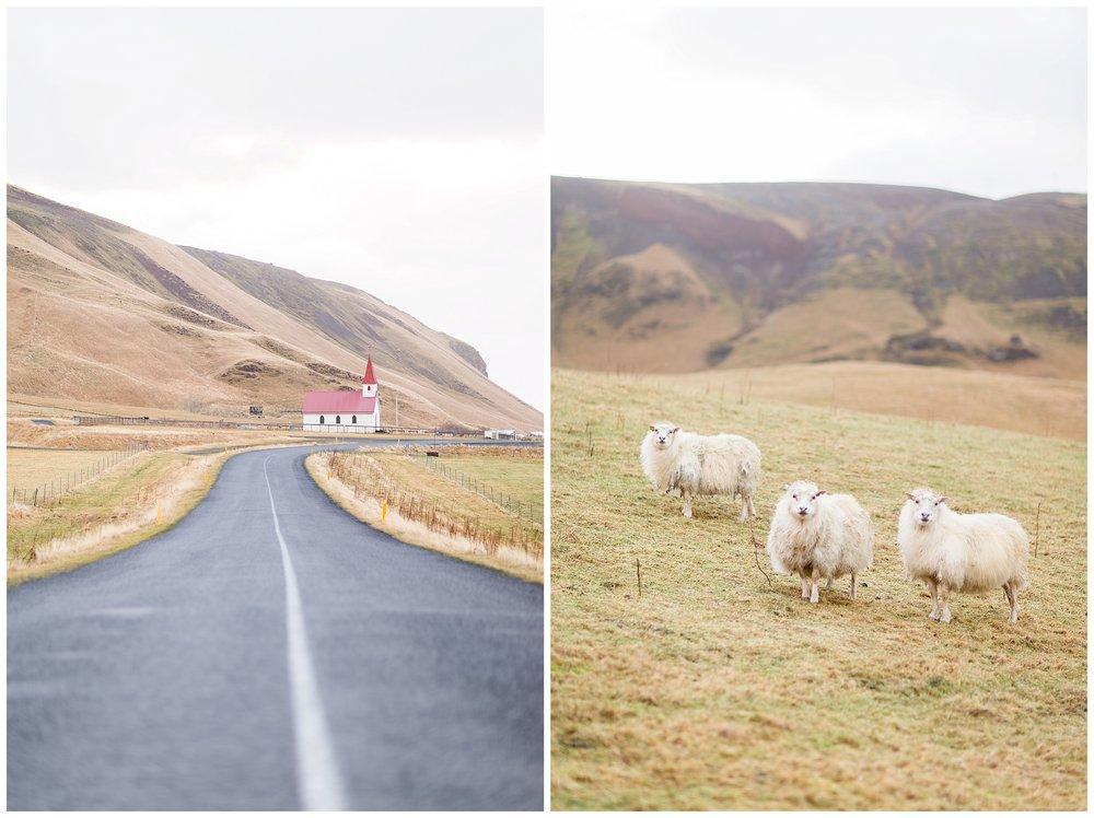 Iceland_Photography_0074.jpg