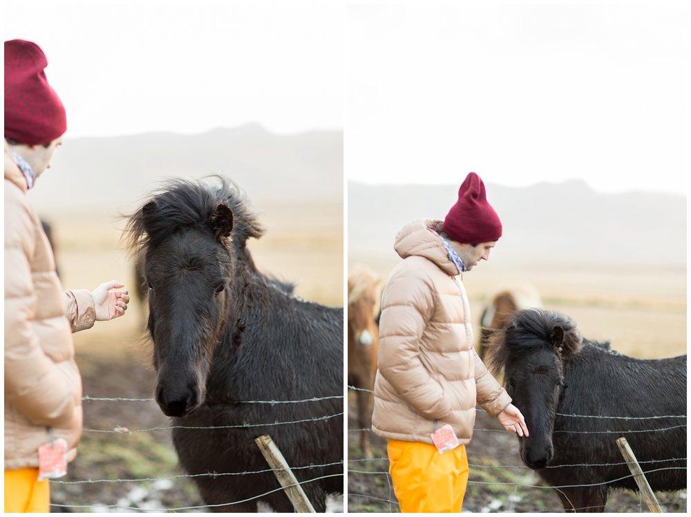 Iceland_Photography_0084.jpg