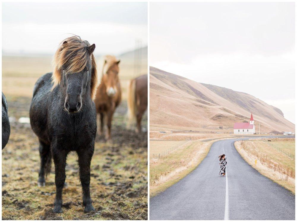 Iceland_Photography_0086.jpg