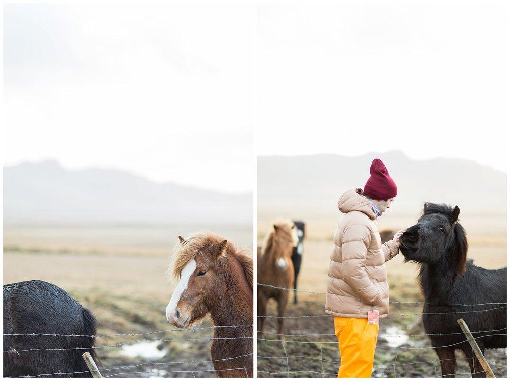 Iceland_Photography_0088.jpg
