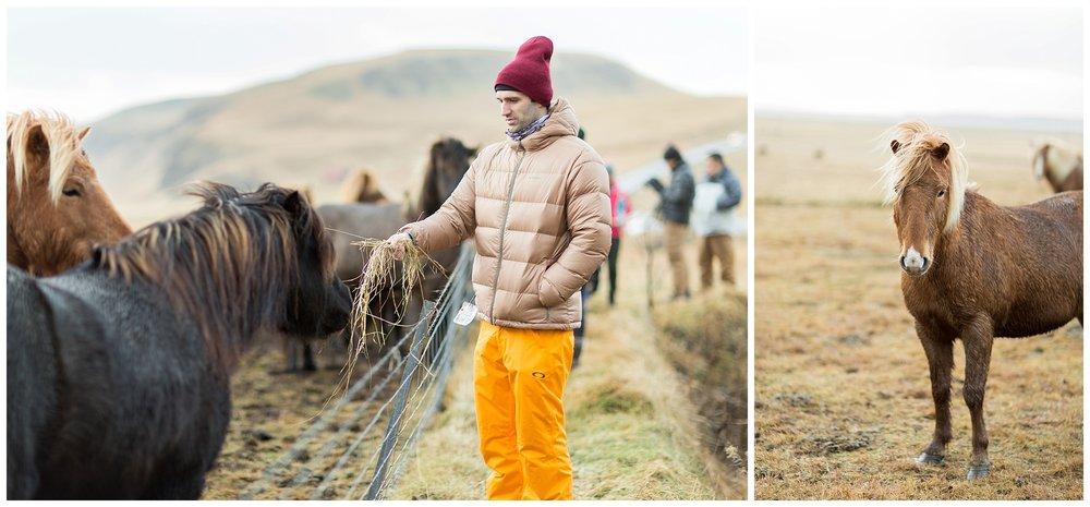 Iceland_Photography_0097.jpg