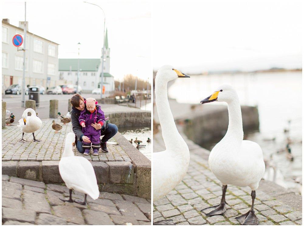 Iceland_Photography_0147.jpg
