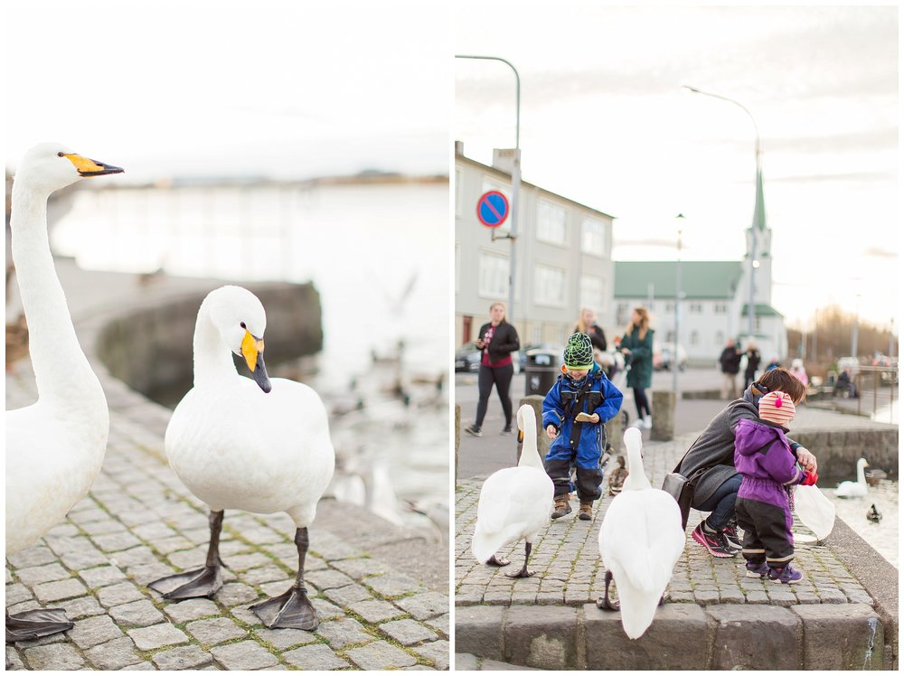 Iceland_Photography_0148.jpg