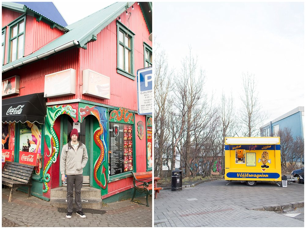 Iceland_Photography_0206.jpg