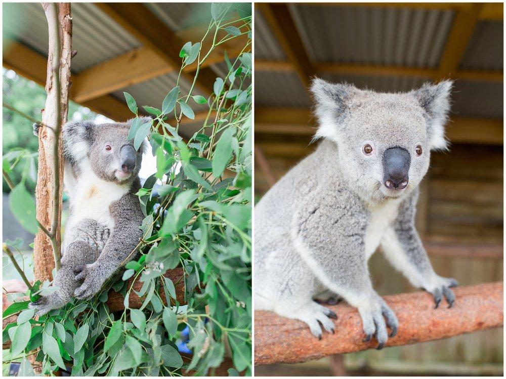 Australia_0036.jpg