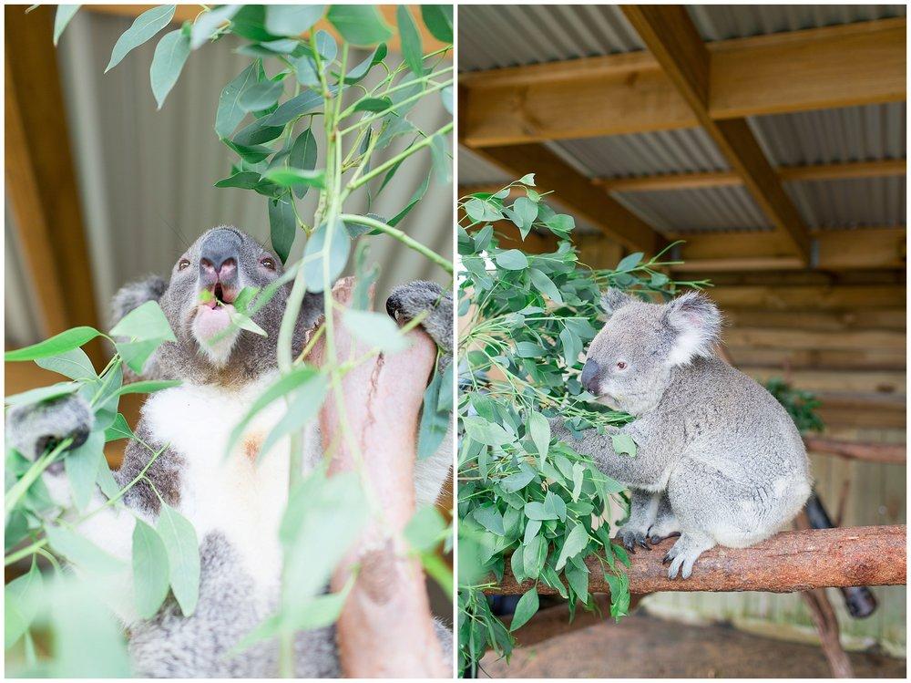 Australia_0037.jpg