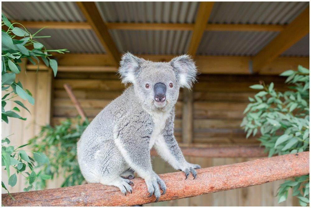 Australia_0038.jpg