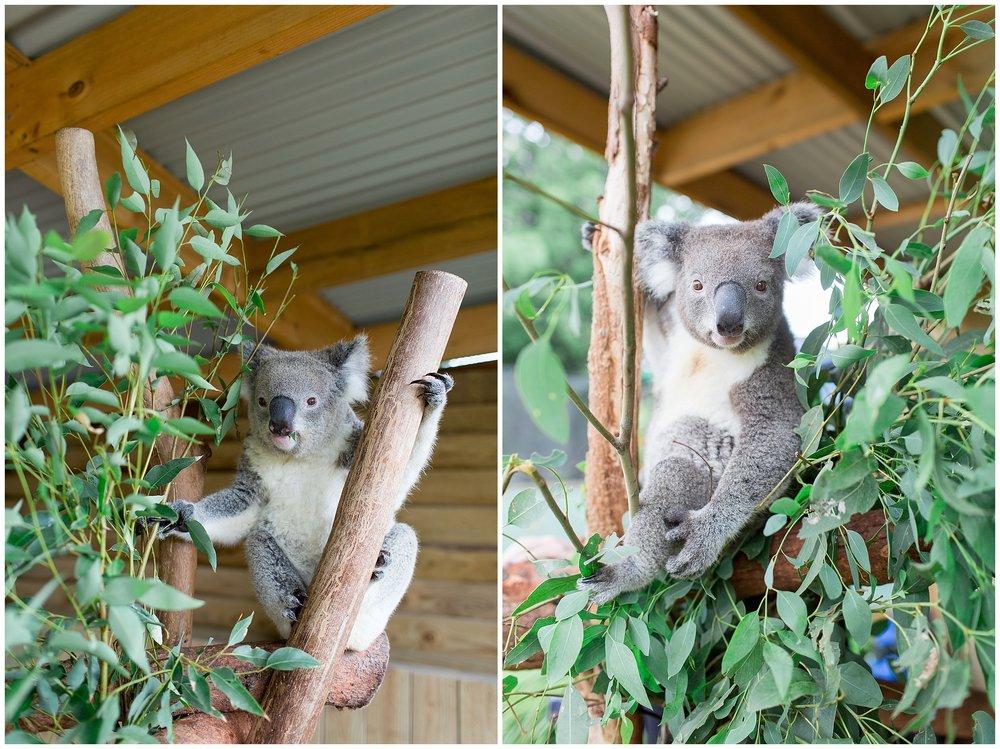 Australia_0039.jpg