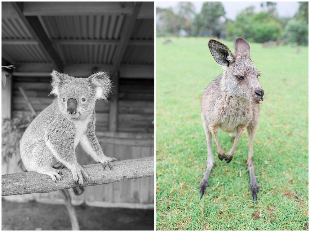 Australia_0041.jpg