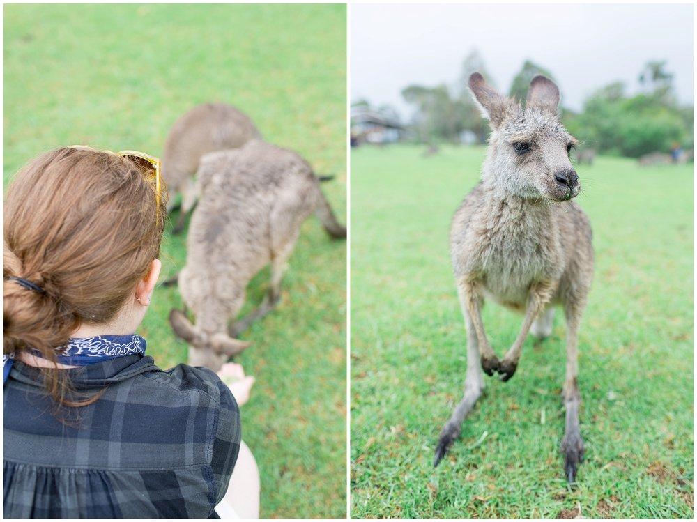 Australia_0045.jpg