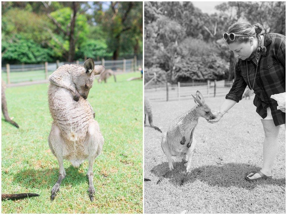 Australia_0049.jpg