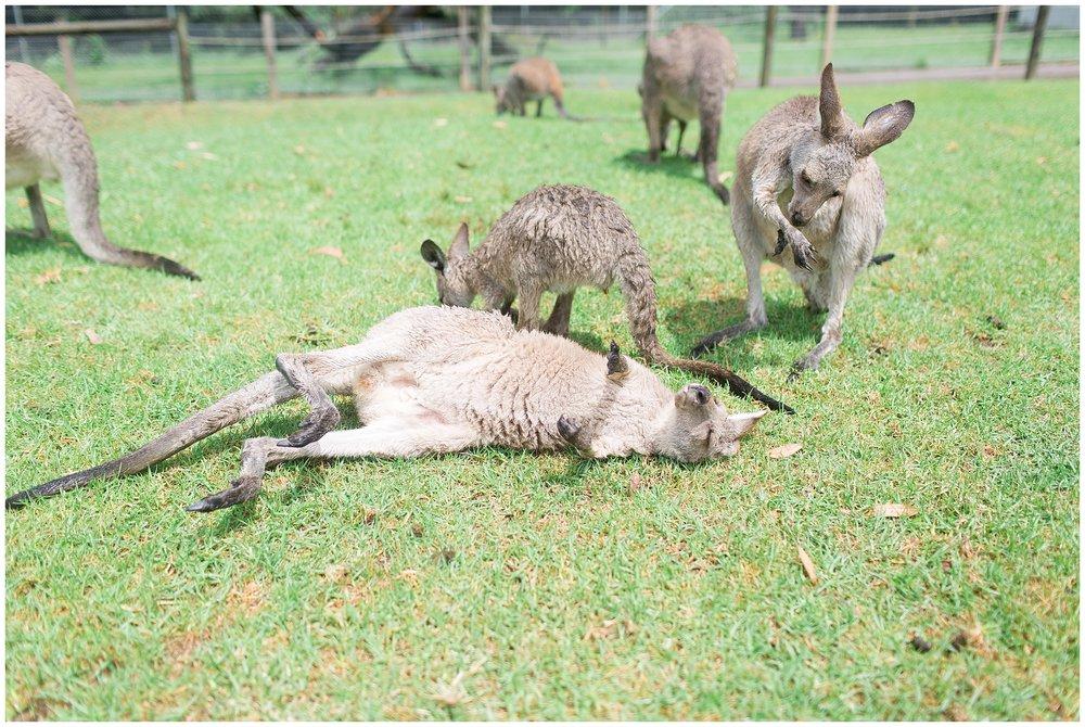 Australia_0061.jpg