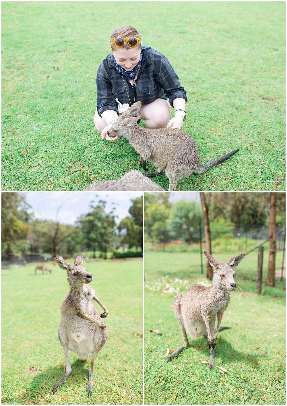 Australia_0067.jpg