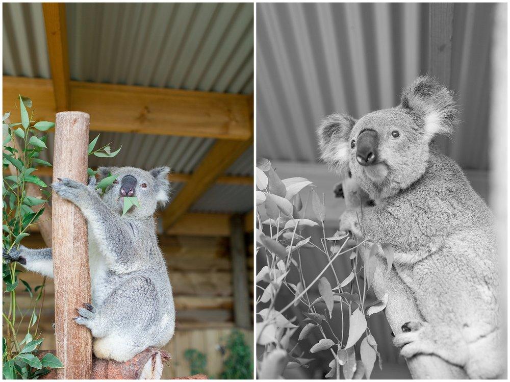 Australia_0034.jpg