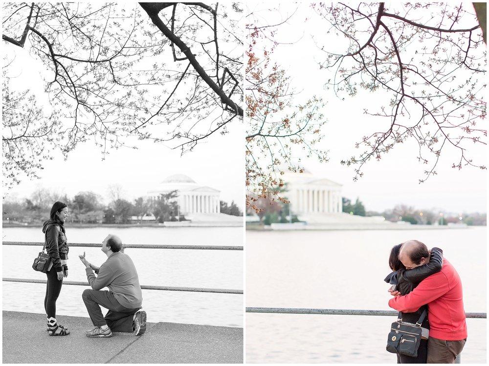 Cherry_Blossom_Proposal_DC_0004.jpg