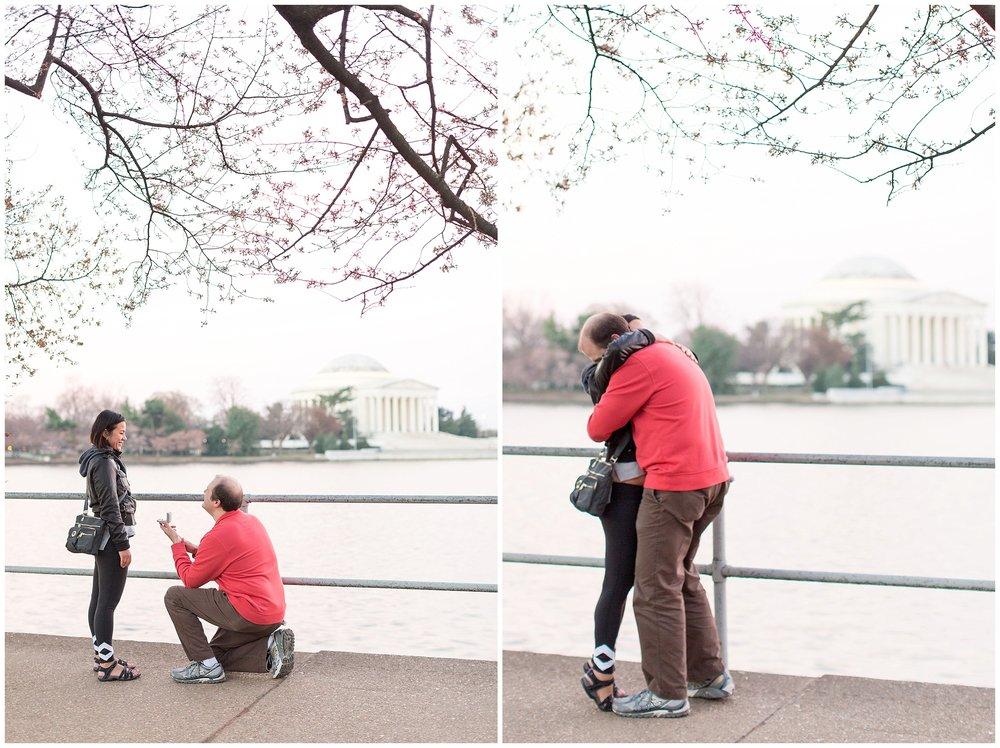 Cherry_Blossom_Proposal_DC_0006.jpg