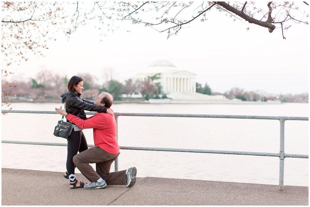 Cherry_Blossom_Proposal_DC_0007.jpg