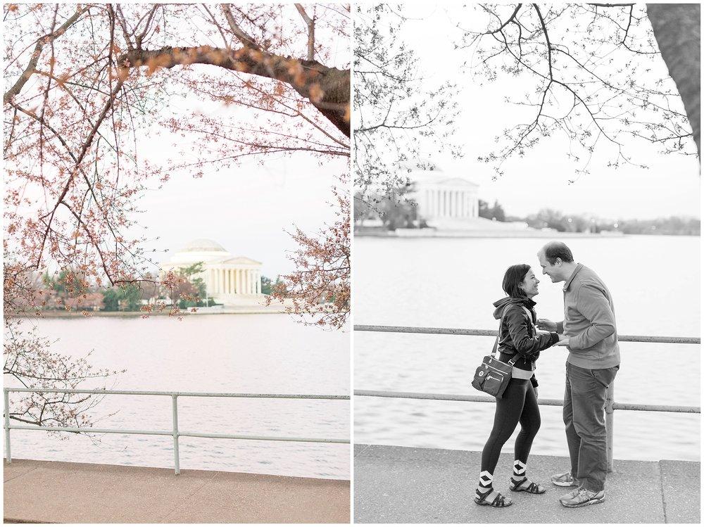 Cherry_Blossom_Proposal_DC_0009.jpg