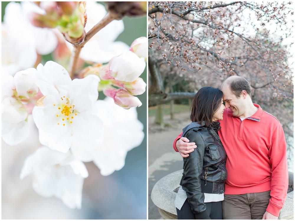 Cherry_Blossom_Proposal_DC_0026.jpg
