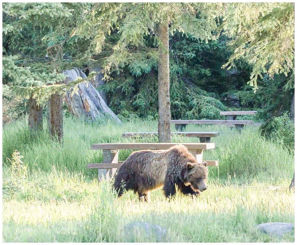 Banff_0010.jpg