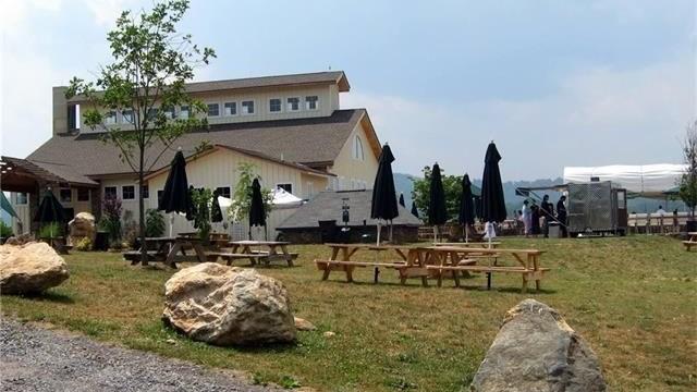Barrel Oak Winery Wedding.jpg