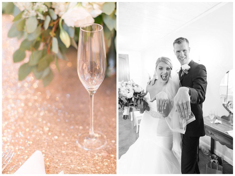 Carriage House Wedding DC Wedding Photographer_0098.jpg