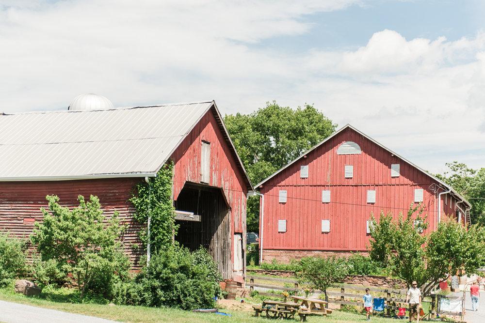 Rocklands Farm Wedding.jpg