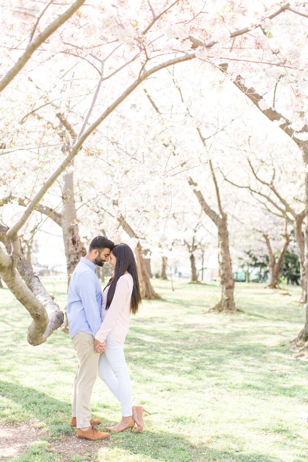 Cherry_Blossom_Engagement-61.jpg