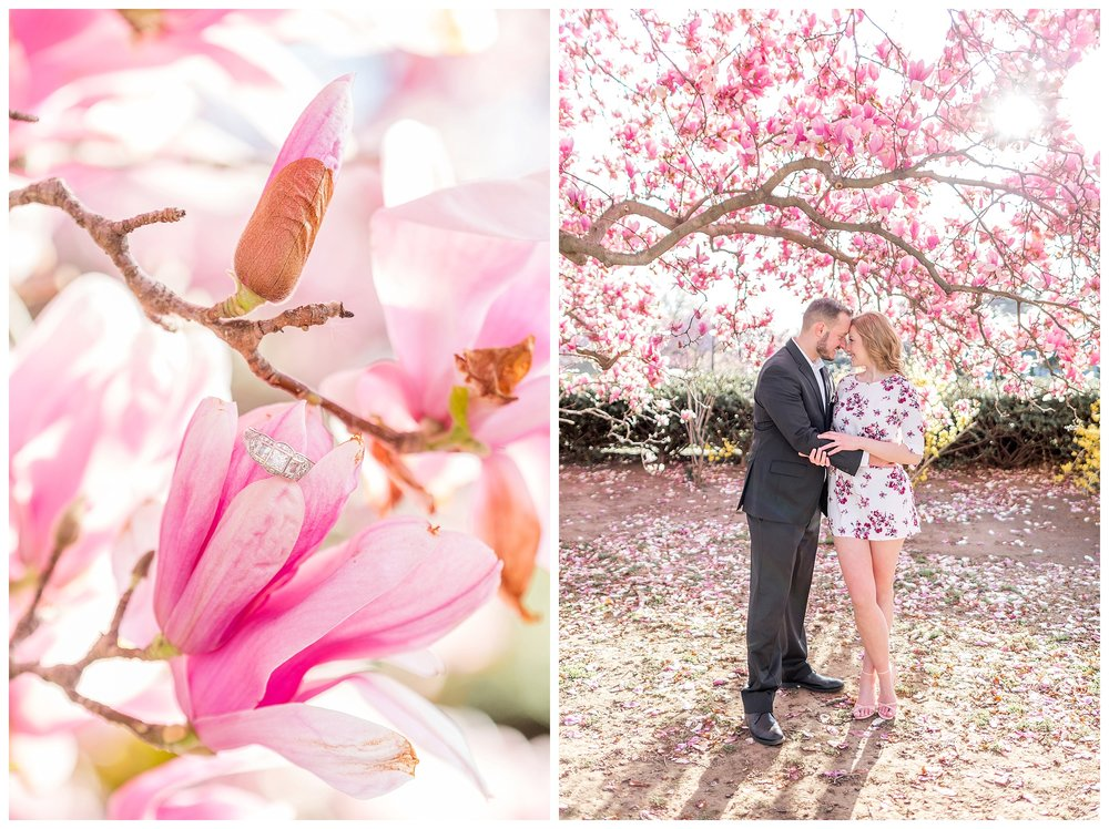 Cherry Blossom Engagement DC Wedding Photographer_0026.jpg