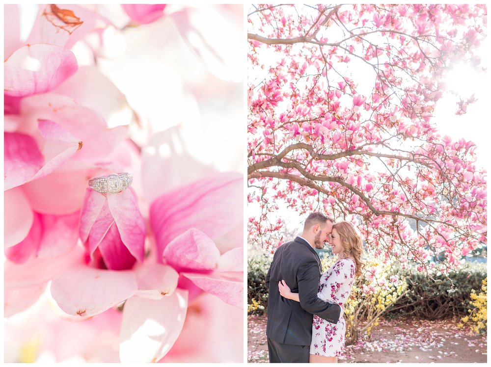 Cherry Blossom Engagement DC Wedding Photographer_0029.jpg