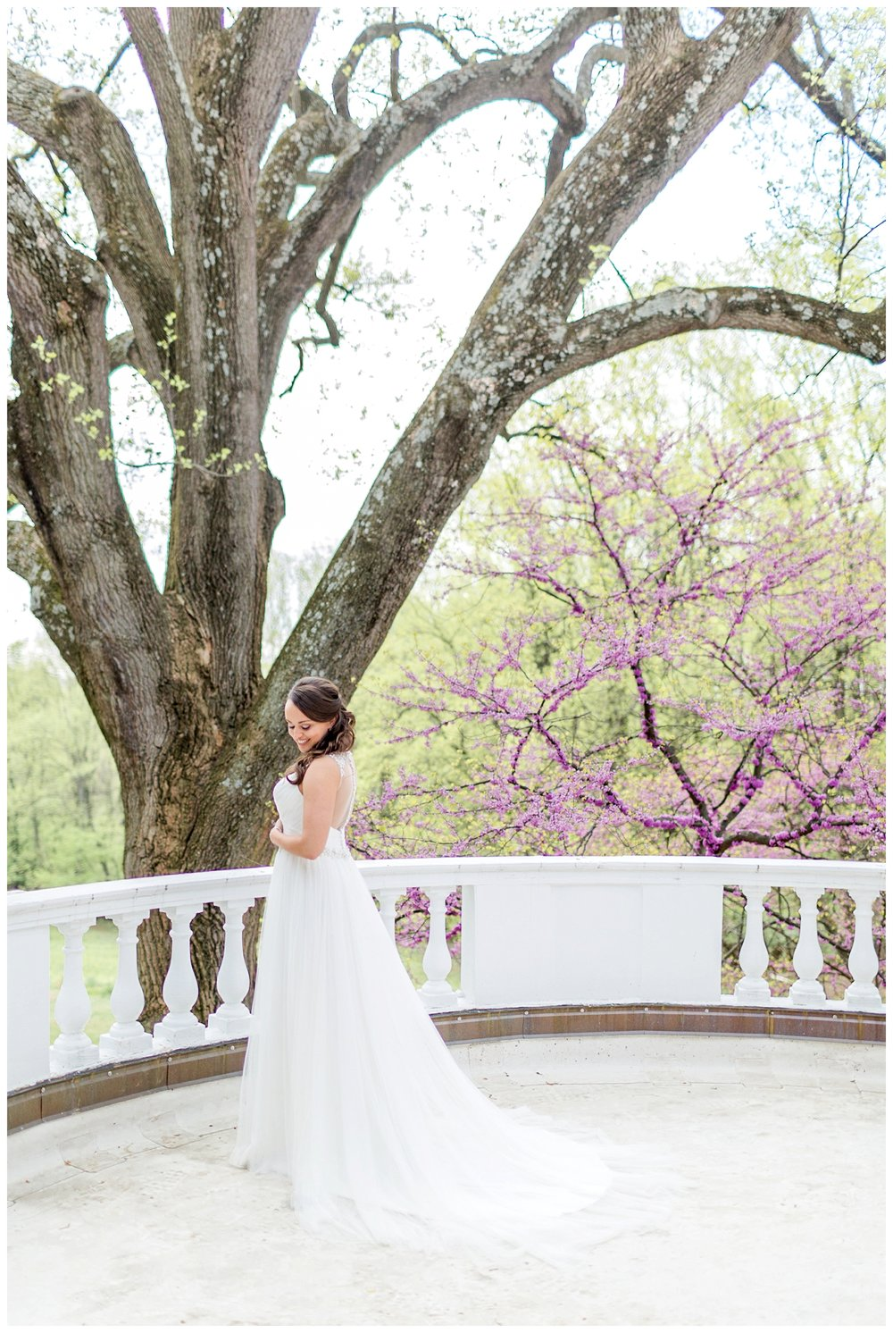 Woodend Nature Sanctuary Wedding Maryland Wedding Photographer_0027.jpg