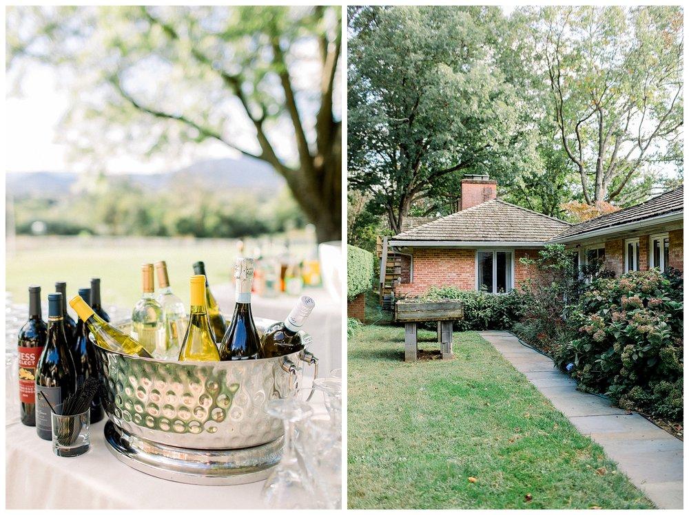 Northern Virginia Mountain Wedding_0085.jpg