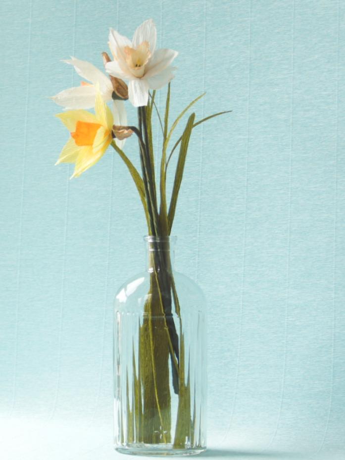Daffodils$24