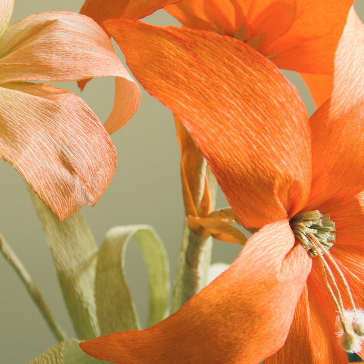 Flower+April+2.jpg