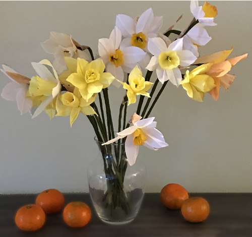FEb 2017 Paper daffodils and tangerines.JPG