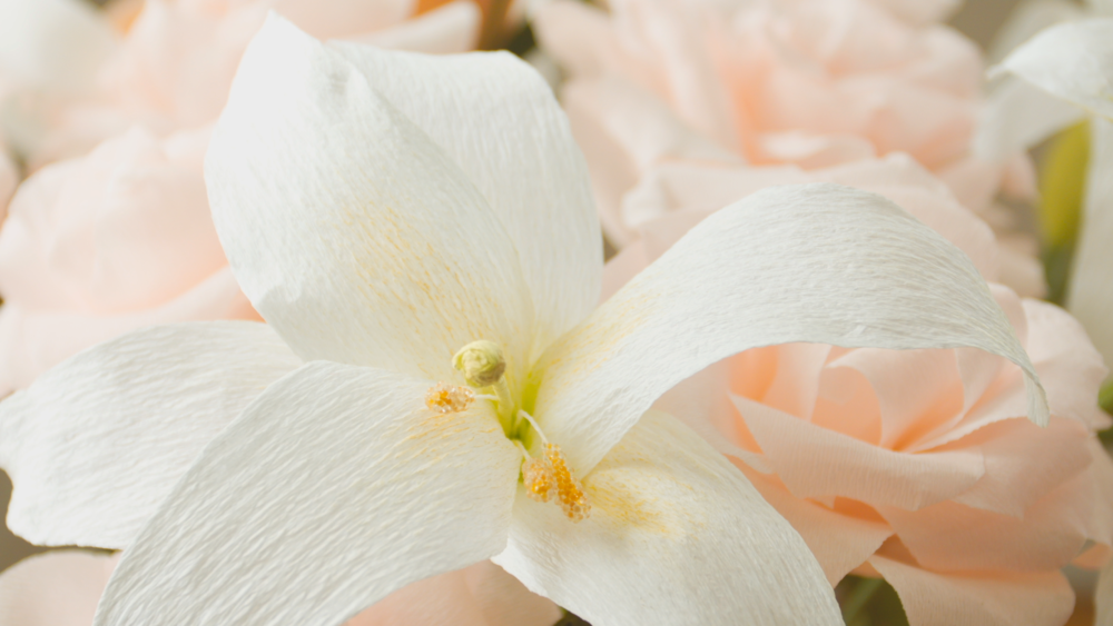 Flower 2 12_15.png
