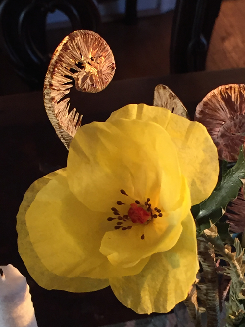 catus flower.jpeg