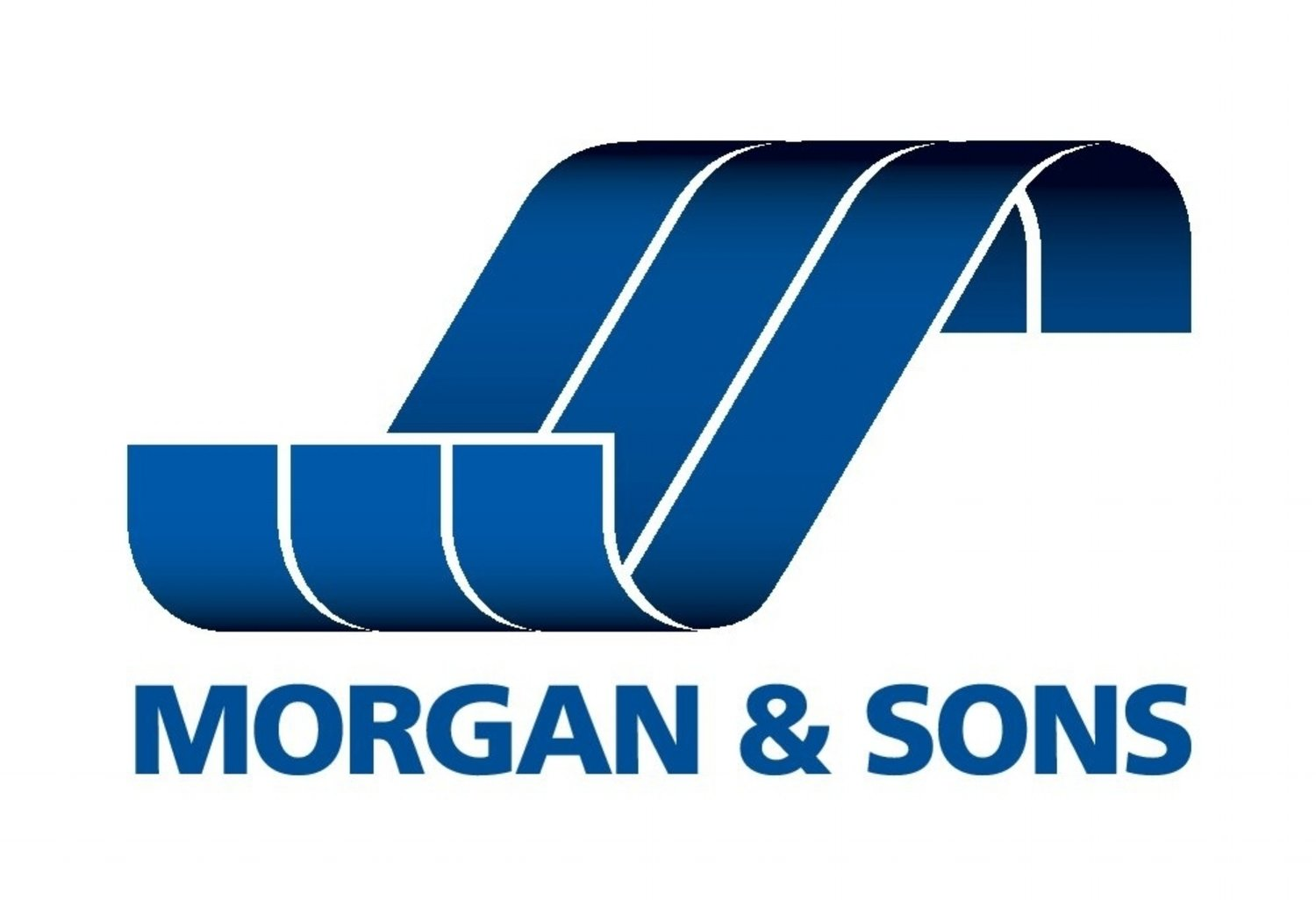 Morgan and Sons Carpet and Upholstery Cleaning
