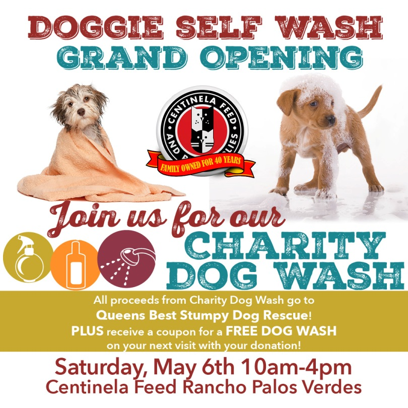 Calendar queens best stumpy dog rescue charity dog wash fundraiser solutioingenieria Image collections