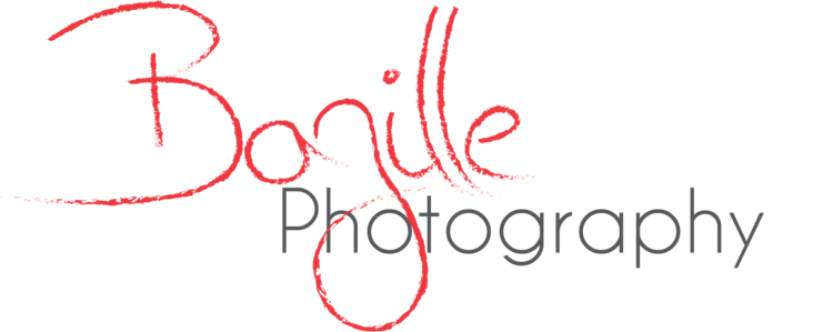 Bazille Photography