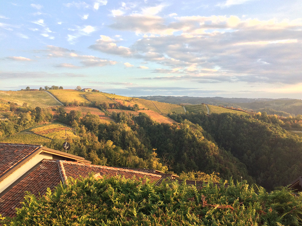 LANGHE, Piedmonte. Tuscany without the crowds