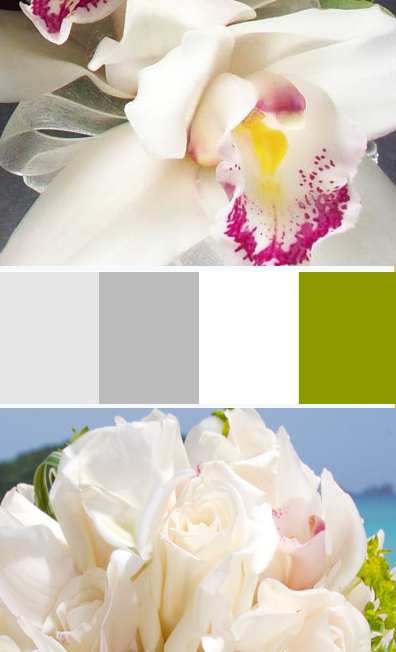 white-cream-palette.jpg