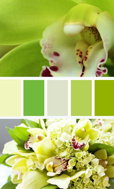 green-palette.jpg