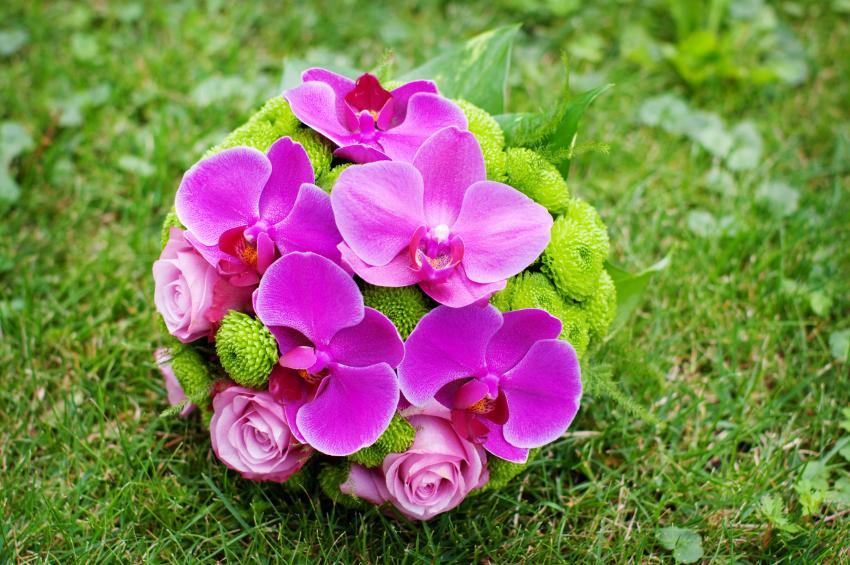 orchid-bouquet.jpg
