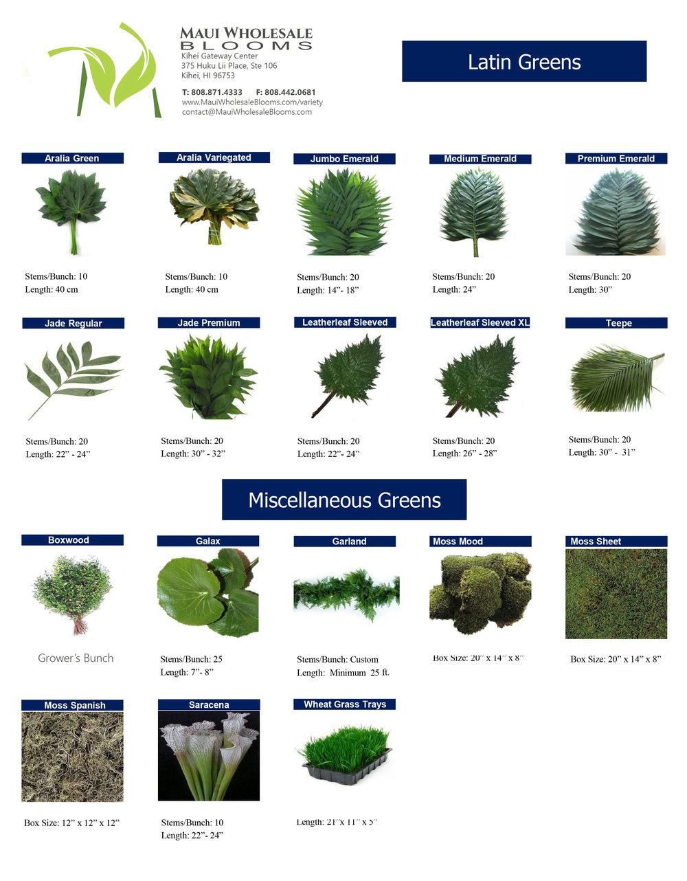 greens-foliage8.jpg