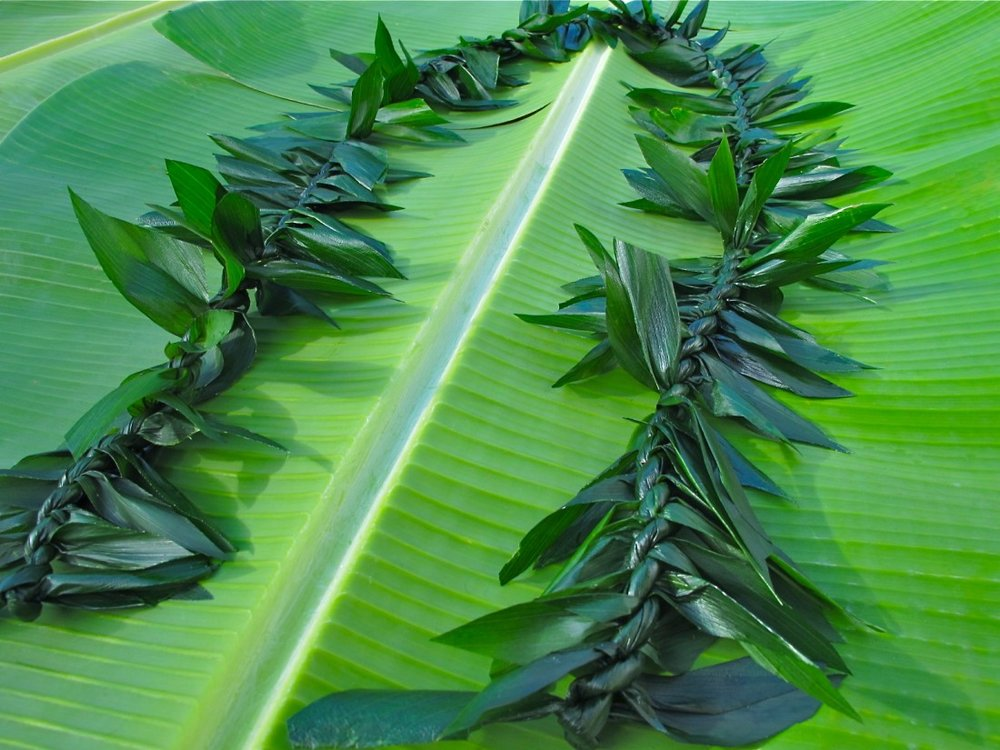 Ti Leaf Maile Lei for Groom