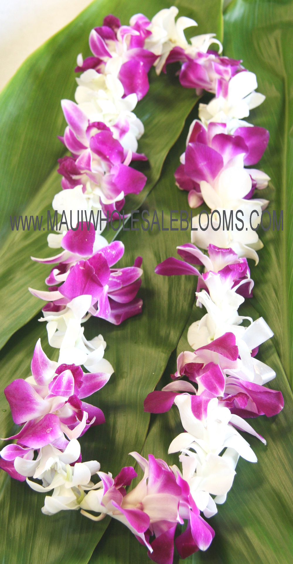 Maui-orchid-wedding-lei.jpg