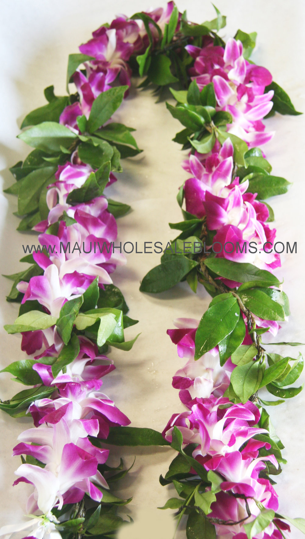 Traditional Groom's Maile Lei with purple Orchid Wrap